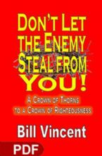 Don't Let The Enemy Steal From You (E-Book PDF Download) By Bill Vincent
