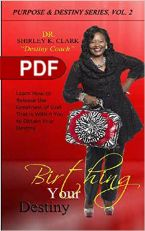 Birthing Your Destiny (E-Book PDF Download) By Dr. Shirley K. Clark
