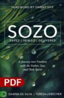 CSOZO Saved Healed Delivered: A Journey into Freedom with the Father, Son, and Holy Spirit (e-Book PDF Download) by Teresa Liebscher, Dawna DeSilva - Click To Enlarge