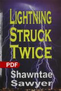 CLightning Struck Twice(E-book PDF Download) - Click To Enlarge