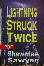 Lightning Struck Twice(E-book PDF Download)
