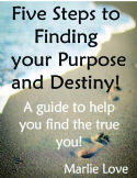 CFive Steps to Finding Your Purpose and Destiny(Ebook PDF Download) by Marlie Love - Click To Enlarge